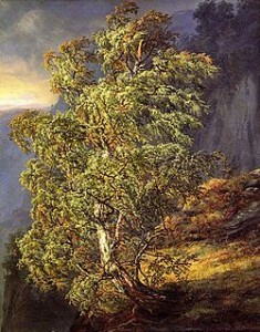 Bjørk i storm, J.C. Dahl (1849).